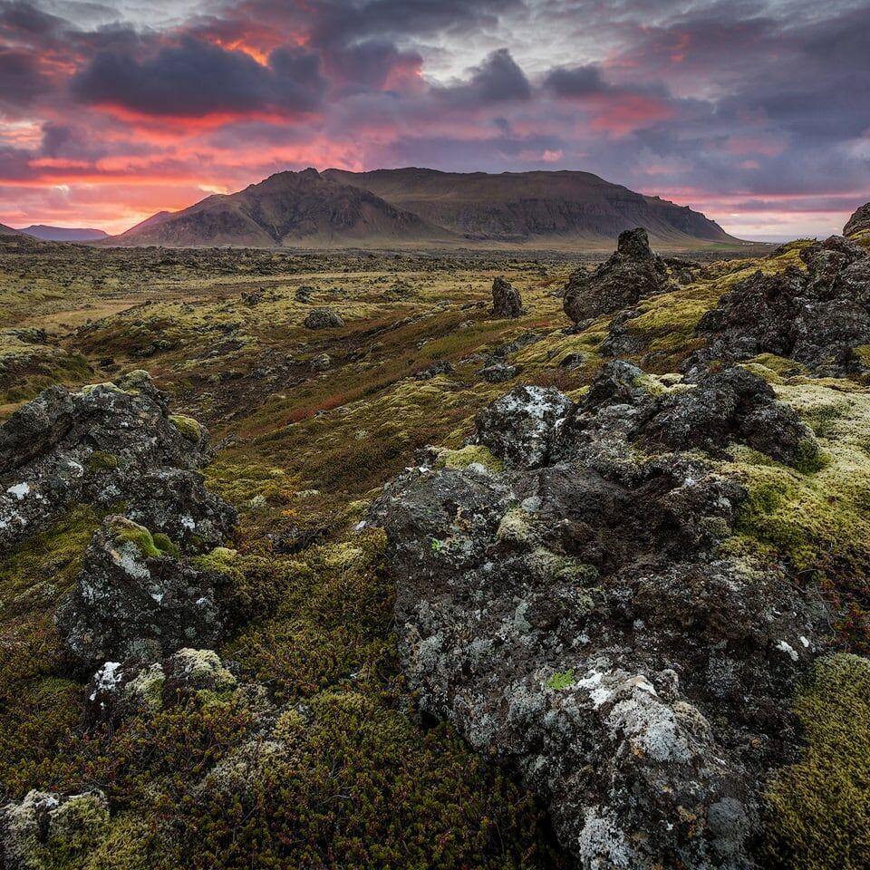 Berserkjahraun lava field at sunset